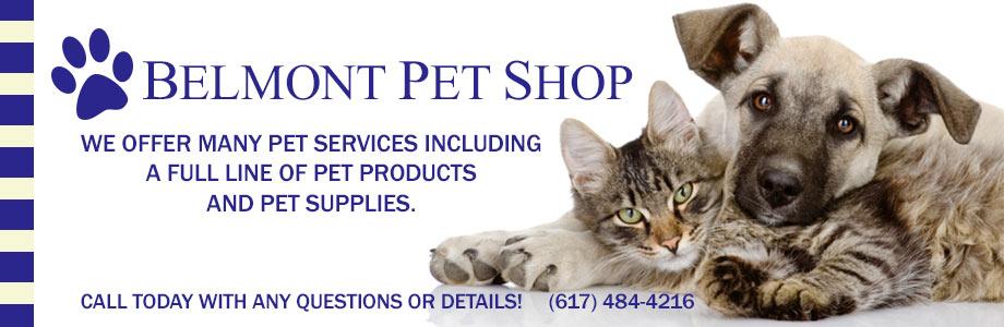 Pet Store Belmont MA